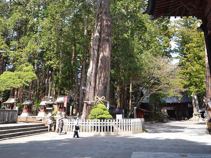 Kitaguchi Hongu Fuji Sengen Jinja Shrine / 北口本宮冨士浅間神社⑥