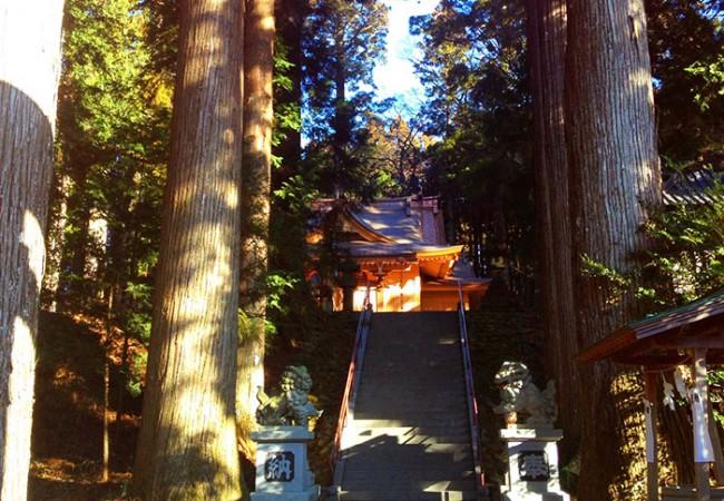 Suyama Sengen Jinja Shrine / 須山浅間神社